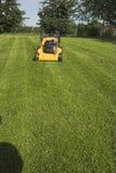 накошенная трава Стоковые Изображения