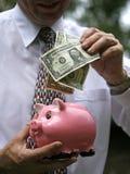 накрените доллары Стоковые Фото