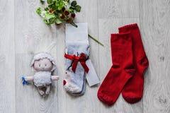 Накладные расходы предметы первой необходимости возражают в блоггере моды Стоковое Фото