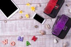 Накладные расходы предметы первой необходимости возражают в блоггере моды Взгляд сверху сумки, слова & x22 snakeskin питона моды; Стоковые Изображения RF