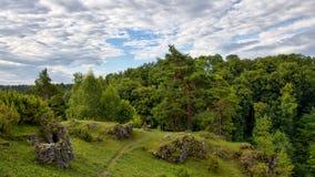 Наклоны можжевельника в долину Kleinziegenfeld в Германии Стоковое Изображение