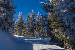 наклон лыжи области caucasus dombay Стоковое Изображение