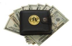 Наличные деньги доллара бумажника и бумаги монетки бита Стоковая Фотография RF
