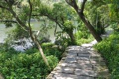 Намечайте путь озером любовника в долине валентинки университета xiamen, самана rgb стоковые изображения