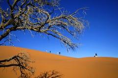 Намибия стоковая фотография rf