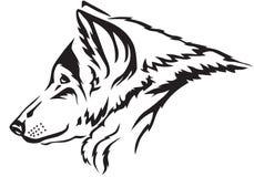 Намордник волка Стоковая Фотография RF