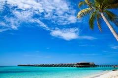 Намочите бунгала на курорте красивого тропического острова Мальдивов роскошном стоковое фото rf