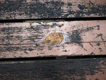 Намочите запятнанный коричневый плиточный пол деревянной доски с желтыми упаденными лист Стоковые Фотографии RF
