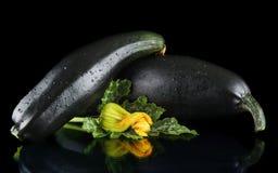 Намочите зрелые courgettes с цветками на черной предпосылке Стоковое фото RF