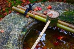 Намочите ковш на каменном тазе на Koto-в виске в Киото Стоковое Изображение