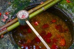 Намочите ковш на каменном тазе на Koto-в виске в Киото Стоковые Изображения