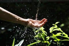 Намочите лить в человеческой руке на природе, вопросе окружающей среды стоковые фотографии rf