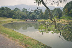 Намочите отражения в Taman Tasik, aka садах озера, в Taiping, Perak, Малайзия стоковые изображения