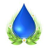 Намочите падение с зелеными листьями, цветками и травой Иллюстрация вектора экологичности изолированная на белой предпосылке Стоковое Изображение RF