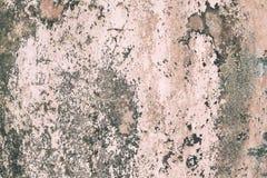 Намочите повреждение причиняя рост прессформы на внутренних стенах свойства стоковая фотография