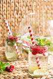 Намочите с полениками, побелите известью, заморозьте и чеканьте на деревенской предпосылке лимонад Стоковое Фото