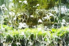 Намочите текстуру водопада с предпосылкой нерезкости в зеленом цвете от куста Стоковые Фото