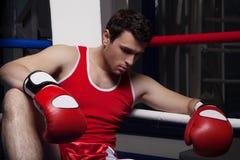Нанесенный поражение боксер. Стоковая Фотография
