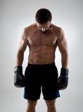 нанесенный поражение боксер стоковая фотография rf