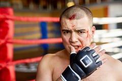 нанесенный поражение боксер стоковые фотографии rf