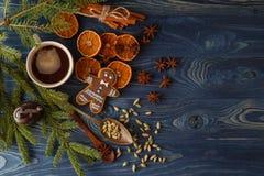 Напиток горячего шоколада или какао с мамами циннамона и пряника Стоковая Фотография