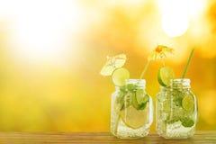 Напиток лимона коктеиля лета Стоковое фото RF