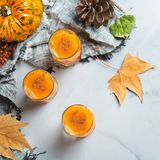 Напиток коктеиля питья спирта осени благодарения с тыквами и листьями Стоковые Изображения