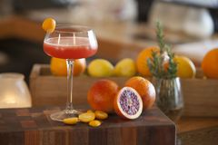 Напиток спирта апельсина крови с ингридиентами в предпосылке Стоковые Изображения RF