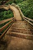 напольные лестницы путя Стоковое Изображение RF