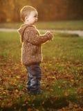 Напольный мальчик Стоковое Изображение RF