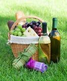 Напольная корзина пикника с вином на лужайке Стоковое фото RF