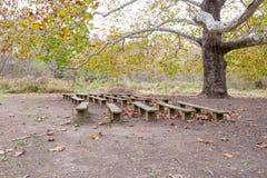напольный seating Стоковые Фото