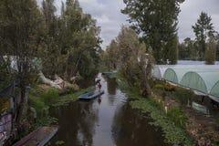 направляет xochimilco стоковое изображение rf