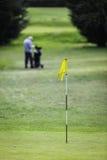 Направляющ для отверстия, флаг на зеленом цвете Стоковое Изображение RF