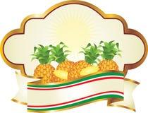 например ананас ярлыка Стоковая Фотография RF