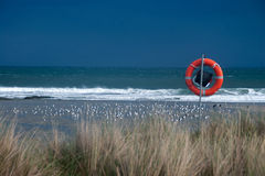 Нара моря Стоковые Изображения RF
