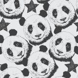 Нарисованная вручную безшовная предпосылка картины с пандой и звездой Бесплатная Иллюстрация