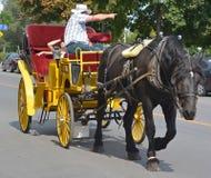 Нарисованная лошадь Стоковая Фотография