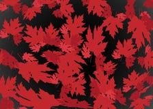 Нарисованная предпосылка осени с красивой предпосылкой с красивыми листьями, текстурой осени ledrawn картины Красные кленовые лис бесплатная иллюстрация