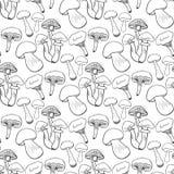 Нарисованная рука величает безшовная картина Предпосылка вектора Doodle с съестными грибами еда здоровая бесплатная иллюстрация