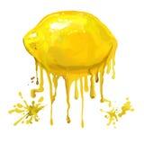 Нарисованная рука иллюстрации вектора лимона плодоовощ Стоковое Изображение