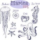Нарисованная рука морского пехотинца установленная Стоковые Фото