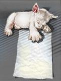 Нарисованная рука спать щенят и пути клиппирования Стоковое Изображение