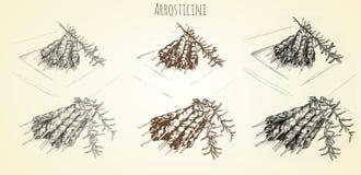 Нарисованная рука Arrosticini иллюстрация вектора