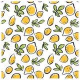 Нарисованная рука doodle излишка бюджетных средств изолировала картину лимона безшовную на белой предпосылке Стоковая Фотография