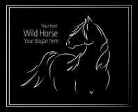 Нарисованная рукой иллюстрация вектора дикой лошади Стоковые Изображения RF