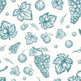Нарисованная рукой картина предпосылки вектора сбора виноградин осени безшовная Ягоды виноградины, завтрак-обед и карточка эскизо бесплатная иллюстрация