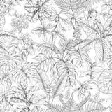 Нарисованная рукой картина тропических заводов иллюстрация вектора
