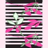 Нарисованная рукой печать тропического завода ветви stripes spr картины ретро Стоковая Фотография