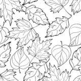 Нарисованная рукой предпосылка осени Листья осени Черно-белое море Стоковые Изображения RF